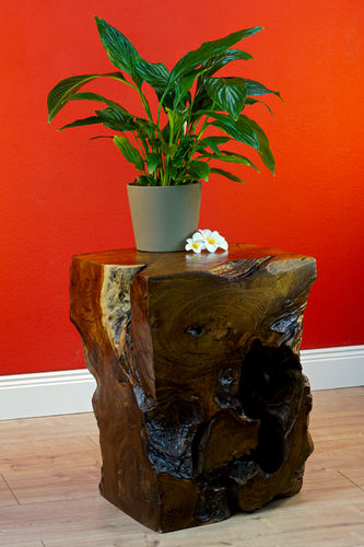 Root Wood Side Table MABA