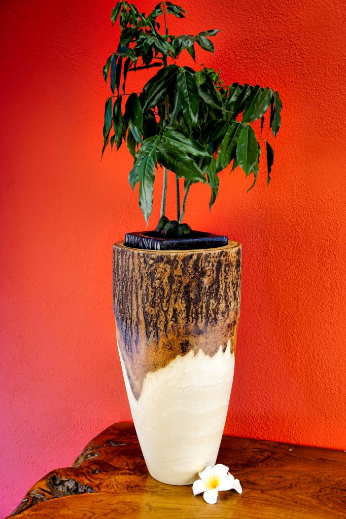 xl mango holz vase mit rinde hoch deko dekoration. Black Bedroom Furniture Sets. Home Design Ideas