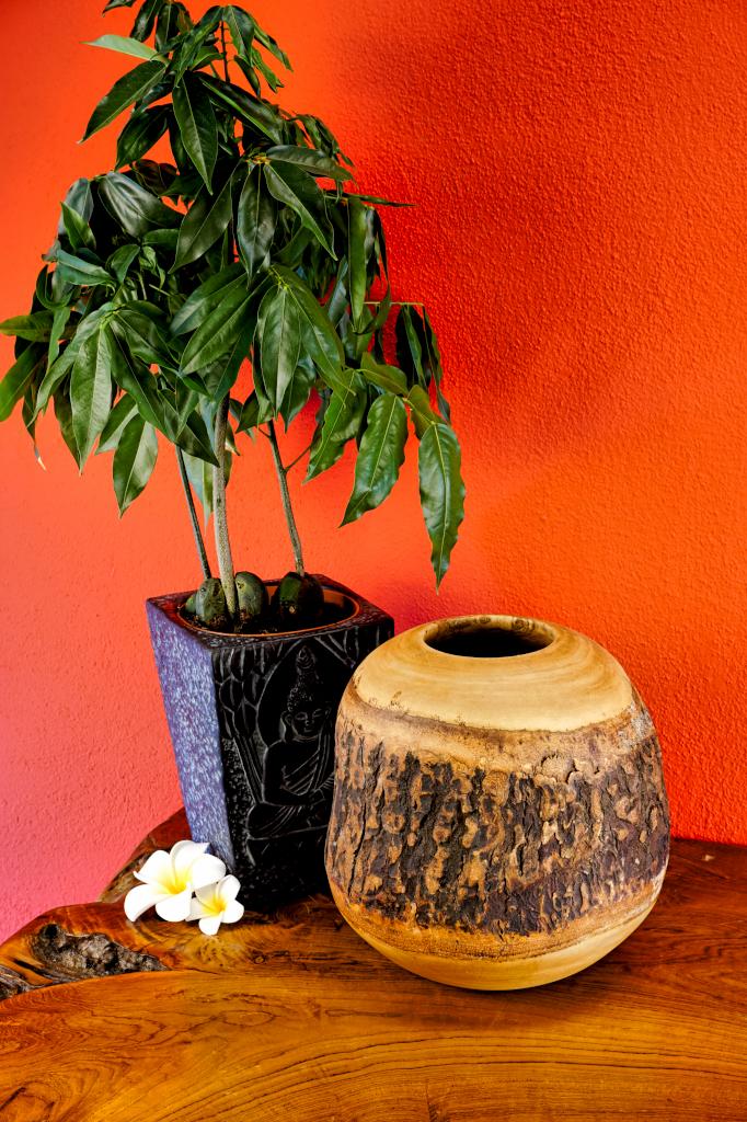 xl mango holz vase mit rinde rund deko dekoration. Black Bedroom Furniture Sets. Home Design Ideas