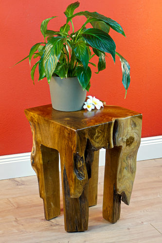 Root Wood Side Table BAN CHOM