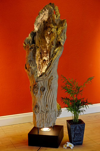 Tree Trunk Floor Lamp BAN NON