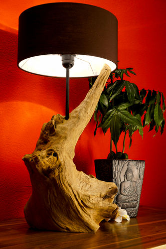 your beach lamp bring vintage the diy that into incredible home forest lamps driftwood and
