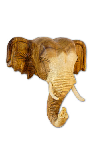 Wooden Elephant Head nature