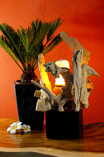 Root Wood Table Lamp TAIPING